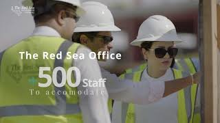 The Red Sea's key achievements 2020