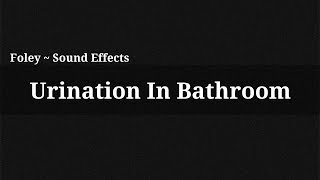 Urination In Bathroom / Sound Effect(, 2014-12-13T15:56:26.000Z)