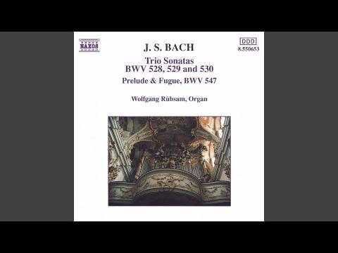 Trio Sonata No. 6 In G Major, BWV 530: I. Vivace