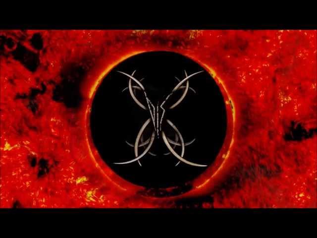 Disfunctional - Parasitic Sun