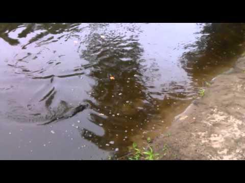 Woonsocket Rhode Island River Fishing