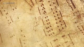 아름다운 뉴에이지 피아노 베스트 - 음악치료, ASMR, 수면음악, 자장가, 공부음악 ♪