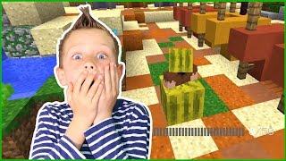 HIDE AND SEEK / Hiding in Minecraft
