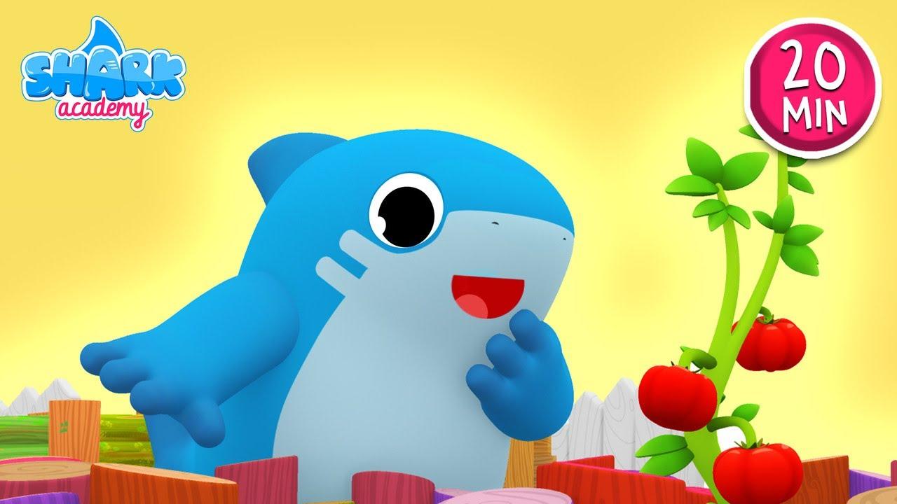 Shark Academy - Get dressed - Baby Shark Nursery Rhymes for Children