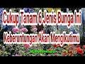 Jenis Tanaman Bunga Pembawa Keberuntungan Wajib Tanam Di Depan Rumah  Mp3 - Mp4 Download