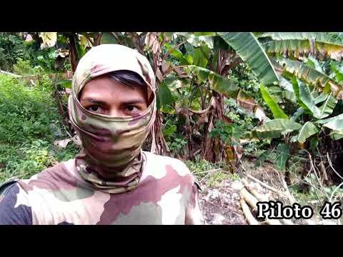Piloto 46 Na BR-46 Na Amazônia!