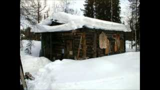 Muuttolintu-valssi by Mikael (keikat myy showsystems.fi)