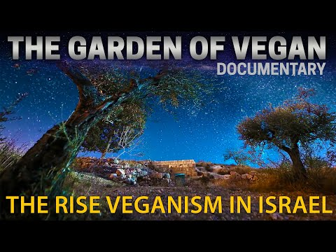 Garden of Vegan | How Many Vegans in the World | Veganism in Israel | Animal Rights in Israel