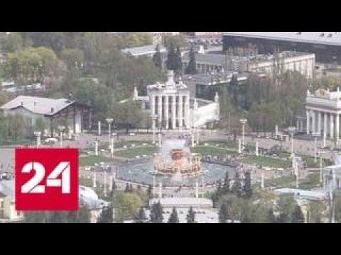 В столице объявлен желтый уровень погодной опасности — Россия 24