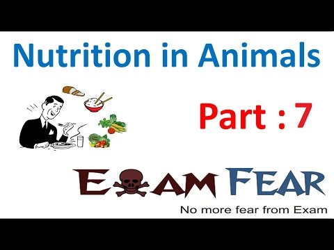 Biology Nutrition in Animals Part 7 (Types of Teeth) Class 7 VII