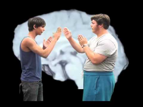 Party Rock Anthem Parody: 12 Cranial Nerves