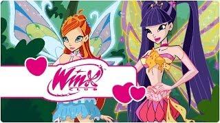 Winx Club - Saison 4 Épisode 2 - L'arbre de vie - [ÉPISODE COMPLET]
