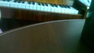 Моцарт- ближе к мечте / secret garden the promise