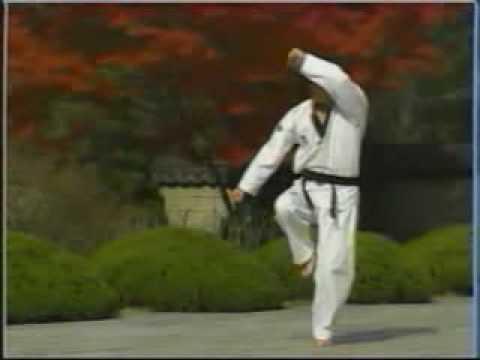 Các bài quyền Taekwondo... - Diễn Đàn Thư Viện Vovinam Việt Võ Đạo_12.flv