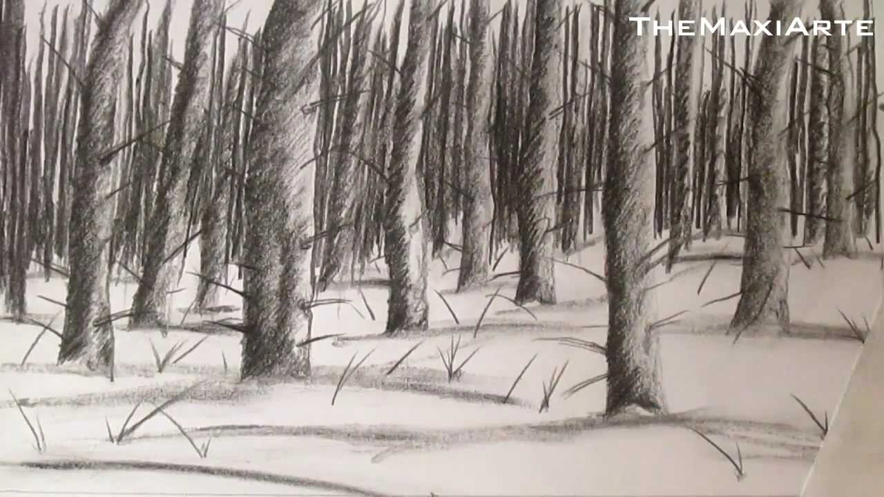 Dibujo De Un Bosque Con Nieve Como Dibujar Nieve Y Paisajes Hd
