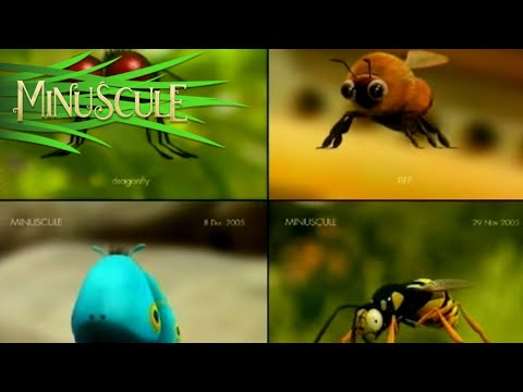 Minuscule Valley Of The Lost Ants - Making Of