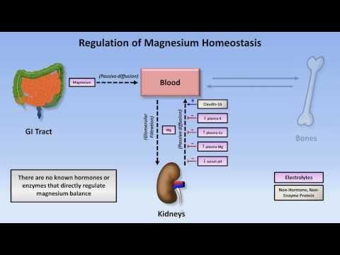 Magnesium Disorders