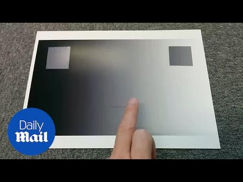 Bizarre Optical Illusion Plays With Your Colour Perception