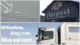 Whales, King crabs and coastal bike trail | Anchorage, Alaska | Liveandgive4x4 travel the world