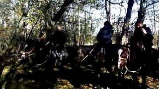 Гуамка. Конные прогулки(Это видео загружено с телефона Android. Конные прогулки в Гуамке: http://www.guamka-polyana.ru/muzgrot., 2011-11-08T08:02:36.000Z)