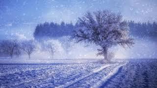 Winter Wallpaper   Download \/