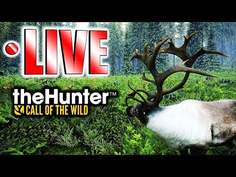 Yukon Valley Trophy Hunt LIVE