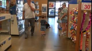 Roxy Doberman At Petsmart Sit Down Stay Recall Distraction