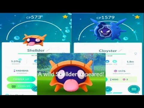 Image result for shiny shellder in pokemon go