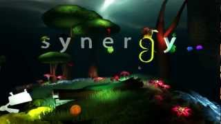 Synergy - Teambuilding Game