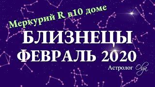 БЛИЗНЕЦЫ гороскоп на ФЕВРАЛЬ 2020. Меркурий Ретро. Астролог Olga