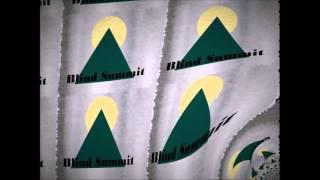 Blind Summit - Ferocity
