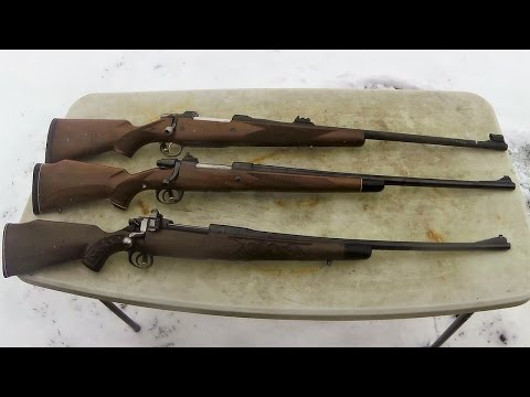 Top 3 Hunting Rifle Calibers for Dangerous Game