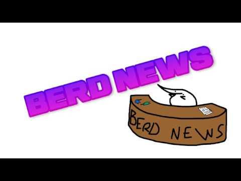 berd news 1