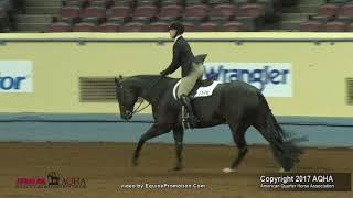 2017 AQHA Hunt Seat Equitation