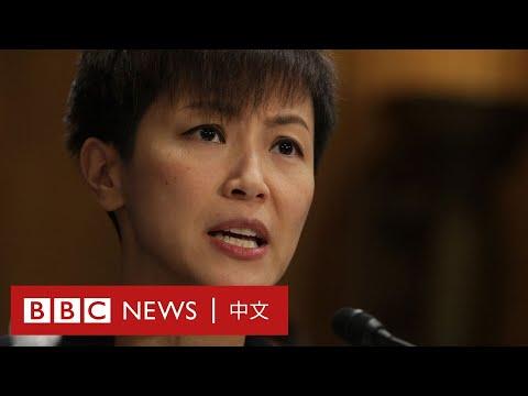 香港人權與民主法案:黃之鋒何韻詩美國國會發言- BBC News