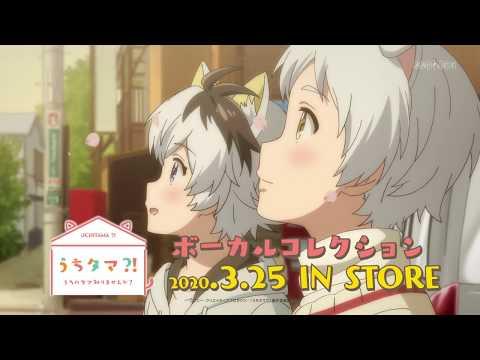 TVアニメ「うちタマ⁈ ~うちのタマ知りませんか?~」のボーカルコレクションが2020年3月25日に発売決定しました! タマと3丁目の仲間たちが歌...