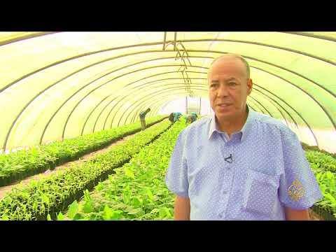 هذا الصباح- مبادرة لتحسين عمل المزارعين بالمغرب  - 12:22-2018 / 8 / 6