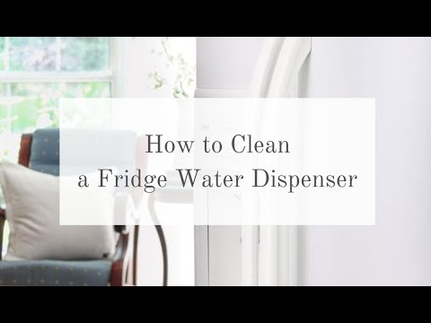HOW TO CLEAN FRIDGE WATER DISPENSER AND ICE MAKER
