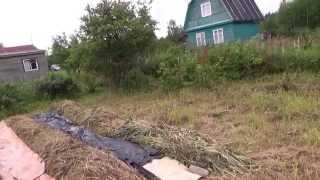 посадка картофеля под сено на целине-1(целина, картофель, посадка под сено., 2015-07-17T19:32:09.000Z)