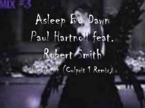 Asleep By Dawn - Paul Hartnoll feat. Robert Smith - Please 44 (Culprit 1 Remix)