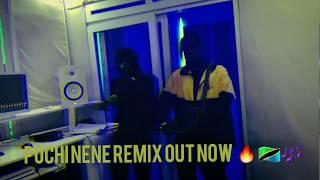 Rayvanny Pochi Nene Remix ( Out Now )