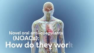 How do novel oral anticoagulants (NOACs) work?
