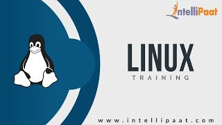 Configuring Apache Server in Red Hat Linux   Linux Tutorials - Intellipaat