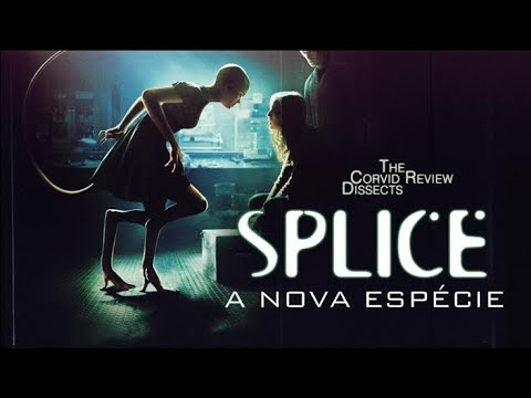 Download SPLICE _ (2009)  Full Movie In Hindi Dubbed (720p)_468.MB    Movie download link👇...