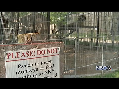 Greenville Exotic Animal Zoo Cited By USDA