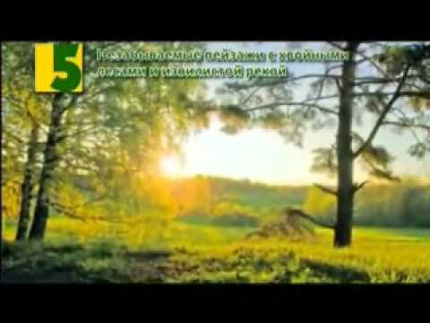 Нижне-Ивкино. 7 причин для отдыха
