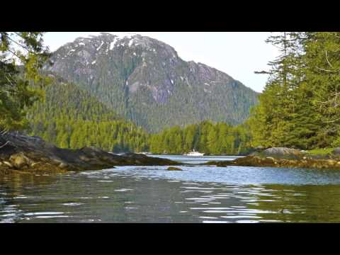 Venture to Alaska. Part 1 - Vancouver Island to Tracy Arm