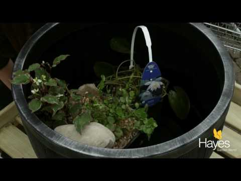 How To Make A Barrel Pond