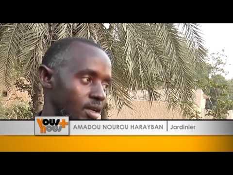 les agriculteurs du Niger s'essayent à la télé-irrigation.