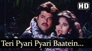 Teri Pyari Pyaari Batein Batein - Anil Kapoor  - Madhuri Dixit - Jamai Raja - Bollywood Songs
